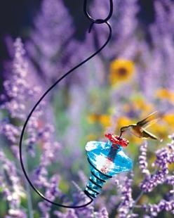 Beautiful glass hummingbird feeder.: Gardens, Gardening, Hummingbird Feeders, Hummingbirds, Flower, Hummingbirdfeeders