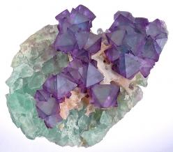 bi-colored Fluorite octahedrons on Quartz and green Fluorite: Crystals, Stones Gems, Quartz Crystal, Gem Stones, Rocks Minerals, Color, Minerals Gemstones, Rocks Gems Minerals
