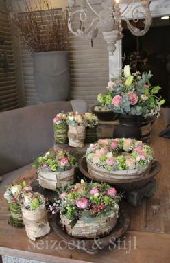 Bloemtaart ((bloemen)): Potted Plants, Floral Design, Flower Shops, Wedding Flowers, Flower Arrangements, Charming Florals, Floral Arrangements, Pretty Flower