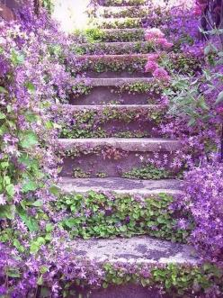 Campanula: Idea, Stairs, Secret Garden, Outdoor, Beautiful, Gardens, Stairways, Purple Flower