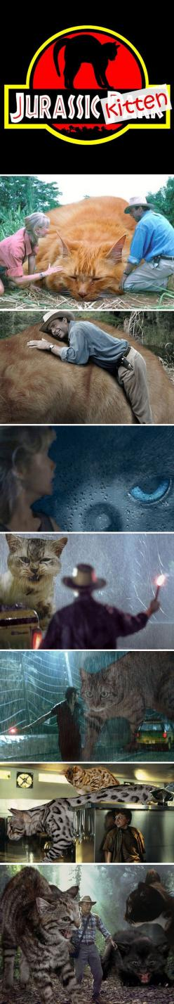 Can this please just be a thing.: Jurassicpark, Jurassic Cats, Cats Humor, Remake, Jurassic Park, Funny, Movie, Jurassic Kitten, Cat Lady