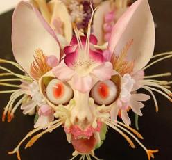 CAT FLOWER!!!  So strange but...can't stop looking at this! eyeballs eyes,eyebrows, mouth,teeth,ears ,nose amazing nature: Cats, Sculpture, Art, Flower Skeleton, Skeletons, Cedriclaquieze, Flowers