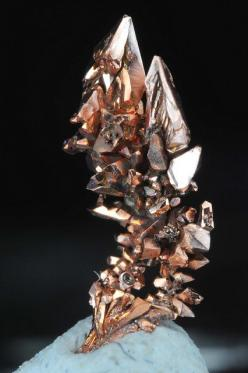 Copper Crystals by fluor_doublet, via Flickr: Precious Stones, Crystals Gems, Copper Crystals Science Nature, Metal, Crystals Minerals, Rocks Gemstones, Gemstones Crystals, Mineral Friends, Crystals Rocks