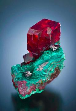 Cuprite on Malachite - both copper based minerals of extremely different colours!: Gemstone, South West, Gems Minerals, Rocks Minerals, Crystals Minerals, Cuprite South, Mineral Friends