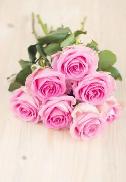 Cvetnica by 79 ideas: Pink Roses, 79 Ideas, Beautiful Roses, Flowers, Garden