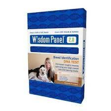DNA Dog Breed ID Kit Finds What Breed Your Dog Is-$69.95 | www.activedogtoys.com #fun_toy #dog_gift_toys: Panel 2 0, Dogs, Pet, Breed Identification, Dna Test, Identification Dna, Dog Dna, Wisdom Panel