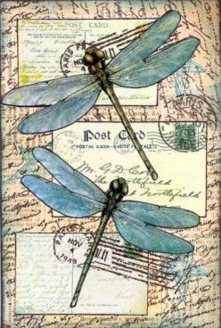 Dragonflies - traded | Flickr - Photo Sharing!: Dragonfly Postcard, Butterflies, Fabric Postcard, Dragonflies Postcard