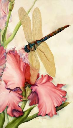 dragonfly: Karen Sistek, Idea, Karen O'Neil, Art, Dragonfly, Paintings, Silk Painting, Dragonflies
