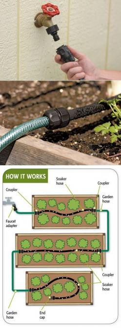 Easy garden watering- splicing soaker hose many places with reg. garden hose to water raised gardens..: Alternative Gardening, Soaker Hose, Garden Watering, Garden Ideas, Raised Beds, Gardens, Gardening