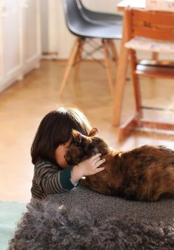 Every home with a child should have a cat for it to love! Follow me at http://www.pinterest.com/cattreehouse/: Flickr, Animals, Girl, Pet, Kids Cats, Mornings, Photo, Friend