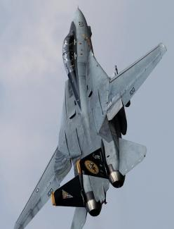 F-14 Tomcat First job as a newly minted engineer was manufacturing radar systems for this plane.: Fly, Airplane, Aircraft, F14, Jets, F 14 Tomcat, Photo, Fighter