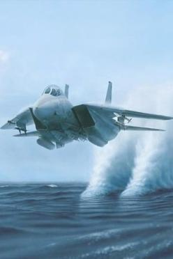 F14 Tomcat (water is pulled up after the engine intakes pass by). No actual vapour cone.: Airplanes, Aircraft, F14 Tomcat, Rooster Tail, F 14 Tomcat, Jet Fighter, Fighter Jets, Air Planes