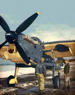 Fairey Barracuda. 1943: Airplanes Wwii, Airplanes Plasticmodelkits, Airplanes Jet, Airplanes Now, Aircraft, Fairey Barracuda, Airplanes Helicopters, Photo, 1943