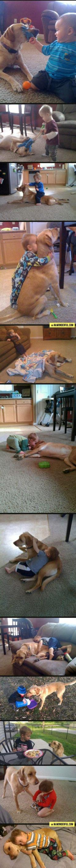 feels 2 of 2: Dogs Dogs, Animals Dogs, Pets, Cute Kids, Kids Animal, Dogs Don T, Greatest Dog