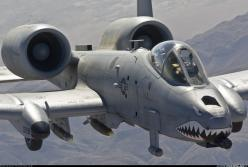 Flying gun,AKA A 10 Warthog: Fighter Aircraft, A 10 Thunderbolt, Aviation, Military Aircraft, A10, Airplane, Thunderbolt Ii, A 10 Warthog, Planes