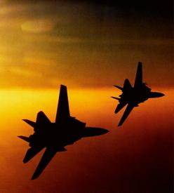 For the Lord your God is He who goes with you, to fight for you against your enemies, to save you. Deuteronomy 20:4: Aviation, Airplane, Aircraft, Fighter Jet, F14 Tomcat, Jets, F 14 Tomcats, Photo