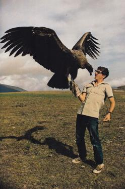 From Exploring the Amazon (1970), National Geographic SocietyPhotography by Helen and Frank Schreider.  Found here.: California Condor, Animals, National Geographic, Big Bird, Beautiful Birds, Things, Photo