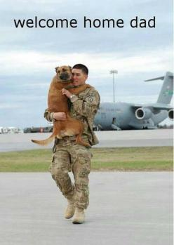 Fun fact: I watched videos of soldiers being reunited with their dogs for like 2 hours one night and sobbed at every single one.: Dad, Animals, Hero, Sweet, Dogs, Welcome Home, Homes, Friend