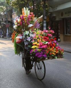 garden on wheels in The Netherlands: Bike, Flower Cart, Color, Flower Shops, Flower Power, Flowershop, Garden, Bicycle