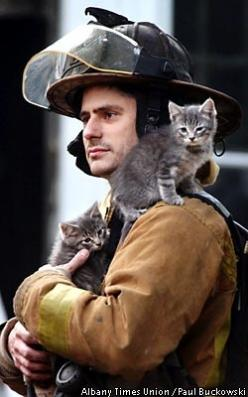 God bless firefighters that save our kitties <3: Cats, Animals, Heroes, Firefighters, Real Men, Firemen, Kittens, Kitty