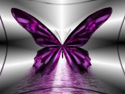 Google Image Result for http://images2.fanpop.com/image/photos/9400000/Beautiful-Butterflies-butterflies-9481772-1600-1200.jpg: Beautiful Butterflies, Quotes, Purple Butterfly, Purple Passion, Daughter, Color Purple, Beauty, Things