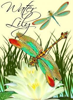 Google Image Result for http://img3.etsystatic.com/000/0/6102224/il_fullxfull.251818911.jpg: Lily Digital, Dragonflies Butterflies, Things Dragonfly, Dragonfly S, Dragonfly Yusufçuk, Water Lily, Water Lilies, Dragonfly Wing