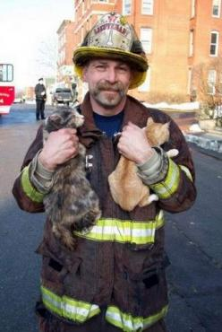 "Hands Full. Fire Lt. John L. Carlson climbed a ladder and coaxed two reluctant cats to come out to him. ""Here kitty, kitty,"" Lt. Carlson said. ""Come 'ere, kitty."" One cat and one kitten eventually came out and Lt. Carlson tucked them into his coat to clim"