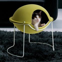 have always wanted this for my kitty. i just know he would love it. i love all these cool modern cat products: Cat Beds, Cats, Animals, Pets, Cat Pod, Cat Stuff, Cat House