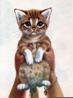 How sweet is this drawing  The Tiny Tawny Kitten, Illustrations by Jan Pfloog, 1969- Kitten: Cat Art, Jan Pfloog, Art Cats, Book Illustrations, Cats Illustrations, Tiny Tawny, Children Books, Baby Cats