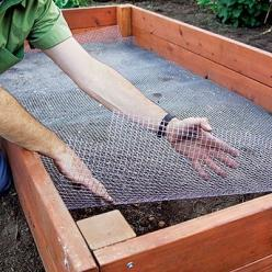 How to build the perfect raised bed: Green Thumb, Raised Garden Bed, Raised Flower Bed, Garden Raised Bed, Raised Beds Garden, Raised Bed Garden, Vegetable Garden, Gardening Raised Bed