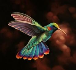 hummingbird...Love these birds, this one is a beauty!  I have been feeding my hummers this season a mixture of sugar water with Young Living essential oil of Orange...the birds are loving it!  Animal Wellness Advocate~shari: Animals, Humming Birds, Color,