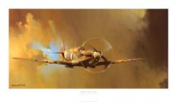 I have a huge print of this painting in my room...Spitfire, the greatest aircraft to ever take to the skies!: Art Prints, Clarks, Barrie Clark, Allposters Com, Art Com, Spitfire Art, Airplane Art, Room, Spitfire Print