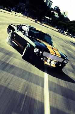i just died omg absoluely beautiful someday i will have one of these<3: Mustangs, Muscle Cars, Ford Mustang, Vehicle, Dream Cars, Auto, Dreamcars