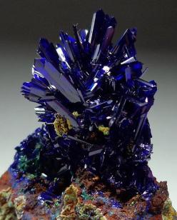 I Like It Wild And Blue...Always In The Country !... http://samissomarspace.wordpress.com: El Cobra, Crystals Minerals Gemstones, Gemstones Minerals, Mexico, Crystals And Gemstones, Azurite El, Rock, Cobra Mine