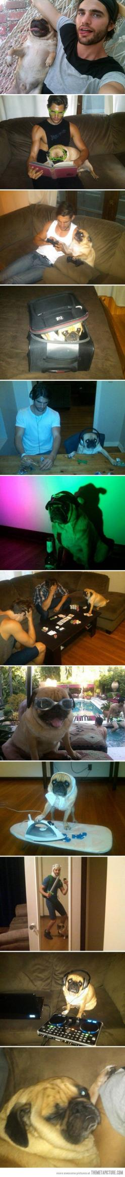 I love the little tiny socks in the ironing photo! The Texas hold em is hysterical!: Best Friends, Adventure Time, Guy, Pug Life, Pugs, Photogenic Pug, Dog, Animal