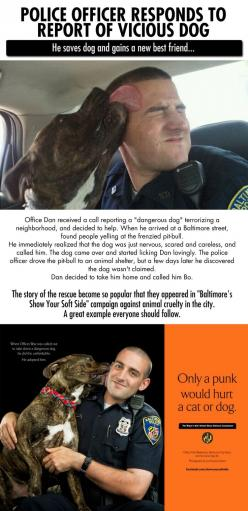 I see so many police abuse their power that it's good to have a reminder, however remote, they aren't all bad.: Cop Saves, Humanity Restored, Best Friends, Pitbull, Pit Bull, Faith In Humanity, Dog, Baltimore Cop, Animal