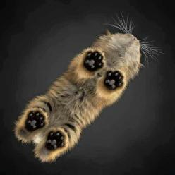 ⭐  It has to be in a wax museum, yes?: Cats, Cat Paw, Kitty Cat, Animals, Pet, Kittens, Photo