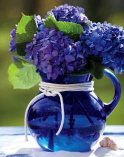 Ive never seen hydrangeas in this deep cobalt-purple color!!: Ideas, Blue Hydrangeas, Beautiful Blue, Color, Cobalt Blue, Flower Arrangements, Flowers, Floral