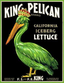 "King Pelican Iceberg Lettuce, c. 1920s  ""King Pelican Iceberg Lettuce. Grown and packed by F.S. and F.E. King Clarksburg California."" From the 1900s to 1950s fruit crate labels were used to market and differentiate fruit packer brands at farmer ma"