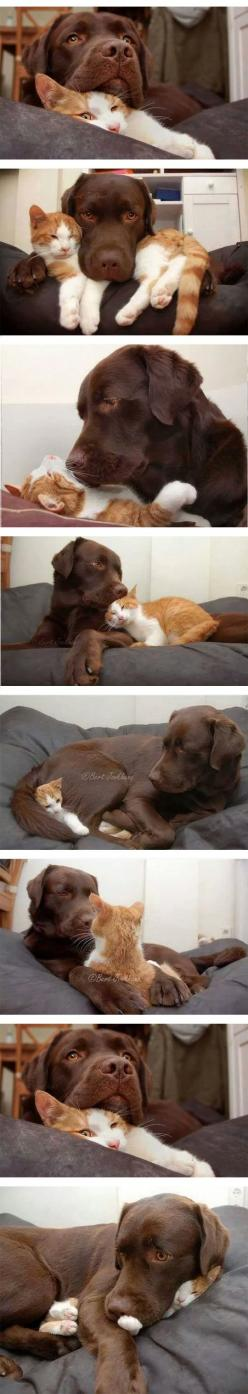 """Let me tell you bout my best friend...   __ I can give you """"CASHBack"""" from your Purchases (Walmart, Groupon, Apple, Tesco, Boots, Asda Gifts, Argos, Best Buy, Macy's, etc.. If you want cash back, see my Profile <@jurale13> for more info)"""