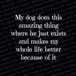 Love my dog! <3 my other dog has the same effect on my life, SHE makes everything amazing.: Doggie, Animals, Dogs, Pet, So True, Puppy, Fur Babies, Friend