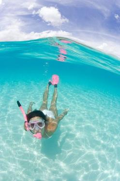 love the pink ~Snorkeling The Beautiful Blue!!~       (by *michael sweet*, via Flickr): Endless Summer, Summer Beach, Sweet Summertime, Summer Vibes, Summerlovin, Summer Lovin, Beach Life, Summer Time
