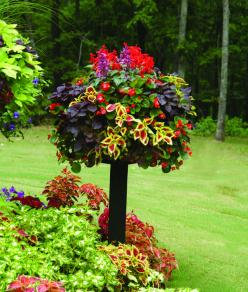 "Love this ""tree"" of mixed colorful plants! Really a basket sitting on a post.: Idea, Container Garden, Birdbaths, Gardens, Gardening, Spring Garden, Flower"