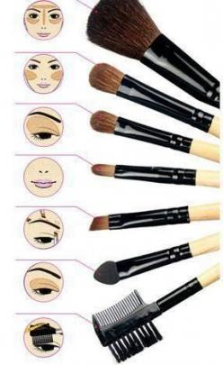 Makeup Brushes 101: Handy visual guide to know what brush is used for what function. #makeupbrushes #makeuptips #beautytips: Make Up, Beauty Tips, Makeup Tips, Makeup Brushes, Makeupbrushes, Make Up Brushes, Hair, Eye