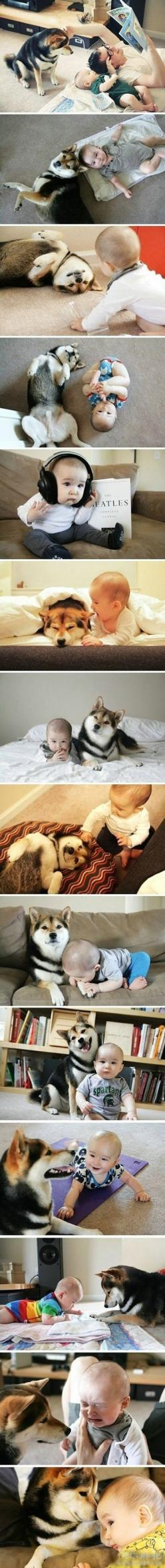 Oh my... I can't get over how adorable this is!: Babies, Dogs, Shiba Inu, Best Friends, Sweet, Puppy, Kid, Animal