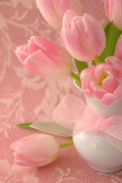 Pink tulips - LARGE  Picture: Pink Flower, Rose, Color, Pretty Pink, Beautiful, Things, Flowers, Pink Tulips, Flower