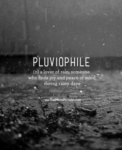 Pluviophile (n.) a lover of rain, someone who finds joy and peace of mind during rainy days. me.: Inspiration, Life, Stuff, Quotes, Love Rain, Things, Rainy Days
