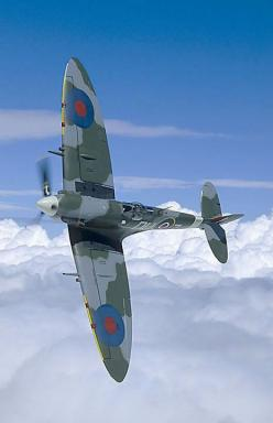Quite possibly the most beautiful aircraft ever built;  The Supermarine Spitfire.: Ww2 Planes, Military Aircraft, Wwii Planes, Airplane, Aircraft, Beautiful Aircraft, Ww2 Aircraft, Supermarine Spitfire