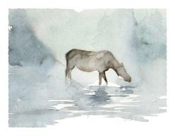 Roderick MacIver   WATERCOLOR: Dance Art, Watercolor, Hailstorm Creek, Art Studios, Heron Dance, Limited Edition, Products