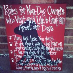 Rules for NonCat Owners 16 by 20 canvas by SweetSerendipityAlly, $35.00: Non Dog Owners, Animals, Dogs, Pet, So True, Fur Babies, House